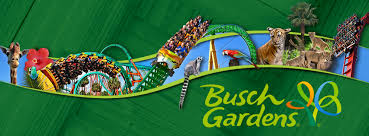 Busch Gardens Tampa Design Ideas